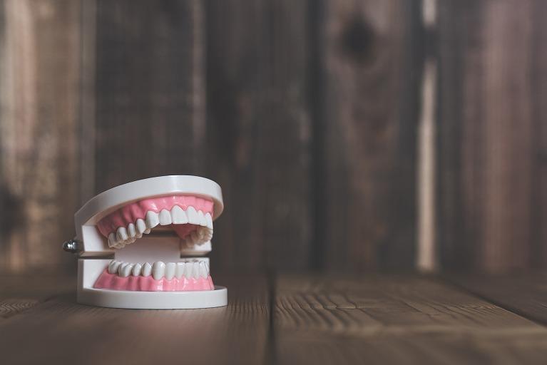 保険の入れ歯と自費の入れ歯